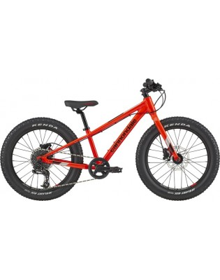 Cannondale Cujo Race 20+ 2020